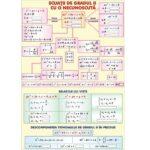 Ecuații de gradul II cu o necunoscută / Transformări geometrice