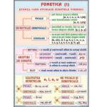 Fonetica(1) / Complementele necircumstanțiale(1)