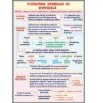Flexiunea verbului(3). Diatezele / Mijloace interne de îmbogățire a vocabularului