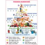 Piramida alimentară / Elemente de bază în croșetare