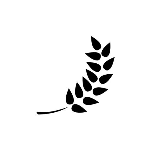 Mulaje și modele - botanică